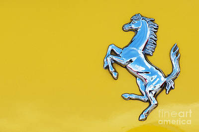 Photograph - Ferrari Prancing Horse by Tim Gainey