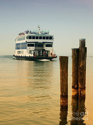 Photograph - Ferry Near Some Poals by Nick  Biemans