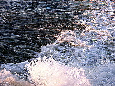 Photograph - Ferry Wake by Pamela Hyde Wilson