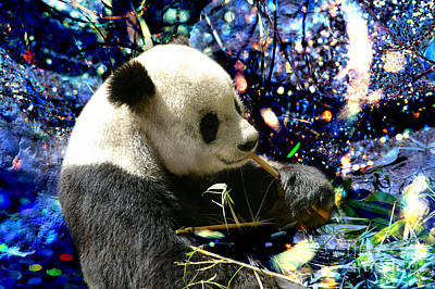 Digitalized Photograph - Festive Panda by Mariola Bitner