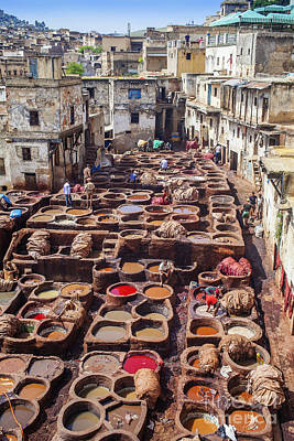 Photograph - Fez Tannery by Patricia Hofmeester