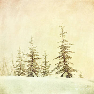 Fading Photograph - Winter's Mist by Priska Wettstein