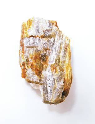 Fibrous Crystals Photograph - Fibrous Sillimanite by Dorling Kindersley/uig