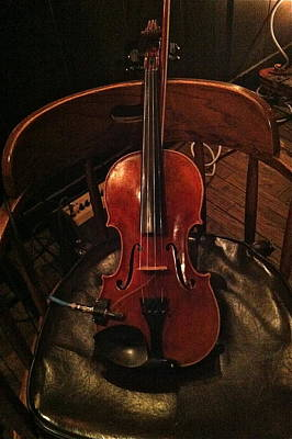 Photograph - Fiddle by Denise Mazzocco