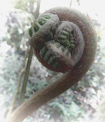 Mixed Media - Fiddlehead by Pamela Walton