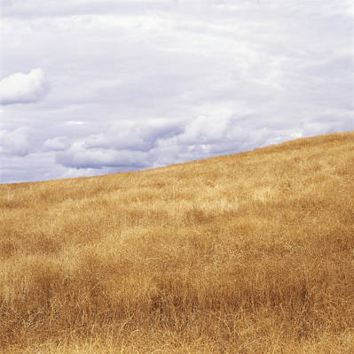 Field And Sky Near Rock Creek, South Art Print by Bert Klassen