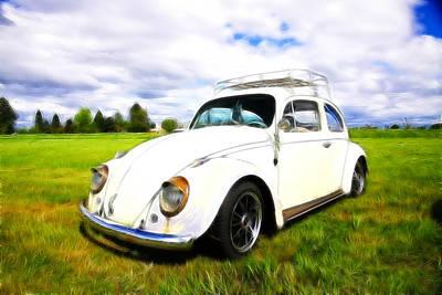 Photograph - Field Bug by Steve McKinzie