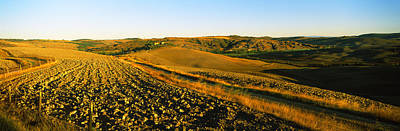 Field, Crete Senesi, Tuscany, Italy Art Print by Panoramic Images