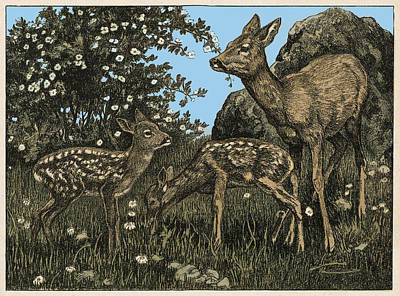 Painting - Field Deer by Gary Grayson