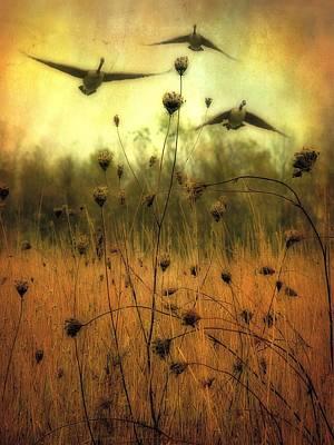 Field Dwellers  Art Print