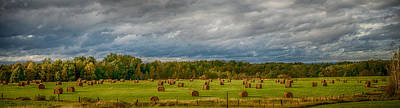 Field Of Bales Art Print by Paul Freidlund