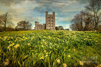Field Of Daffodils Art Print by Adrian Evans