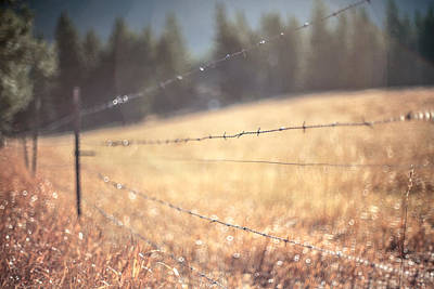 Barbed Wire Fences Photograph - Field Of Dreams by Aaron Aldrich