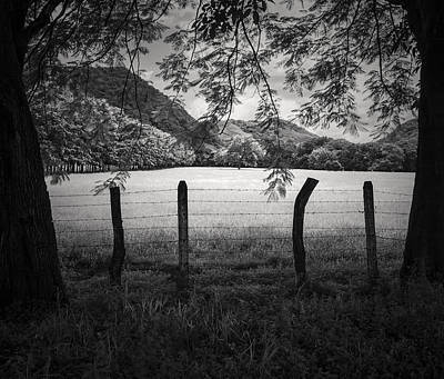 Art Print featuring the photograph Field Of Dreams by Antonio Jorge Nunes