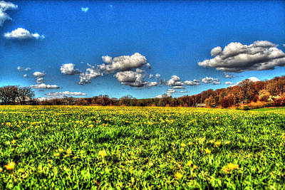 Photograph - Field Of Dreams by Doc Braham