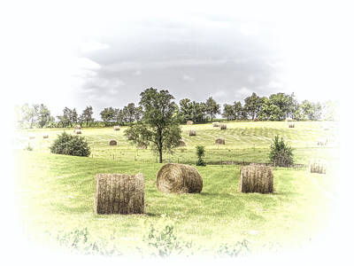 Photograph - Field Of Hay by Beverly Parks