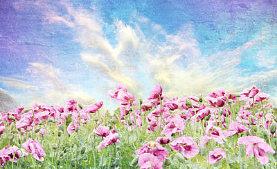 Flower Still Life Mixed Media - Field Of Poppies Stillliefe by Heike Hultsch