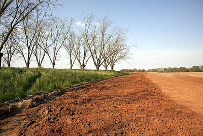 Photograph - Field Of Red Dirt In Rural Alabama by Carol M Highsmith