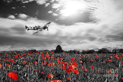 Rememberance Digital Art - Field Of Red by J Biggadike