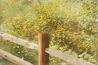 Split Rail Fence Mixed Media - Field Of Sunflowers by Elaine Frink
