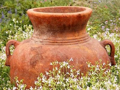Photograph - Field Pot by Darla Wood