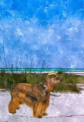 Photograph - Field Spaniel Elegance by Susan Molnar