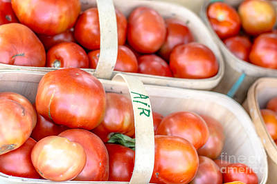 Photograph - Field Tomatoes by Cheryl Baxter