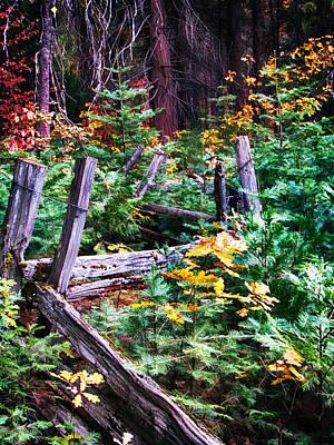 Fall Photograph - Fields And Fences Of Wawona In Yosemite National Park by John Haldane