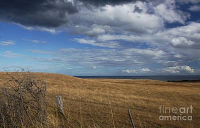 Photograph - Fields Around Bells Beach Iv by Amanda Holmes Tzafrir