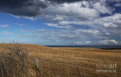 Photograph - Fields Around Bells Beach Iv by Amanda Holmes Tzafrir