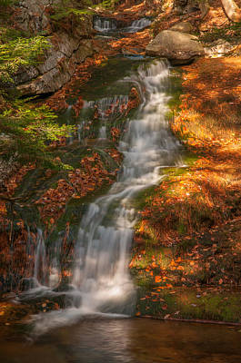 Photograph - Fields Brook In Autumn by Brenda Jacobs