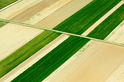 Abstract Landscape Royalty-Free and Rights-Managed Images - Fields in Spring 5 by Davorin Mance