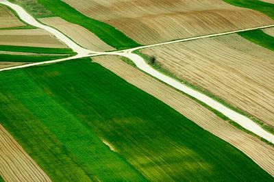 Fields In Spring Art Print by Davorin Mance