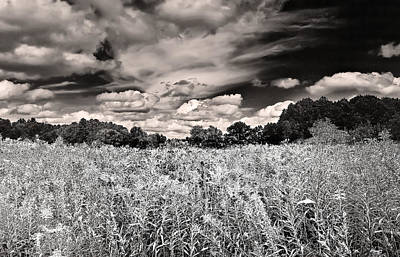 Print featuring the photograph Fields Of Gold And Clouds by Mitchell R Grosky