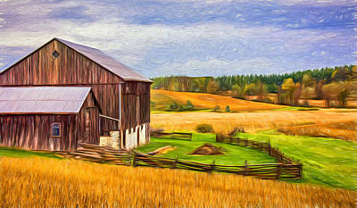Field Of Crops Photograph - Fields Of Gold - Paint by Steve Harrington