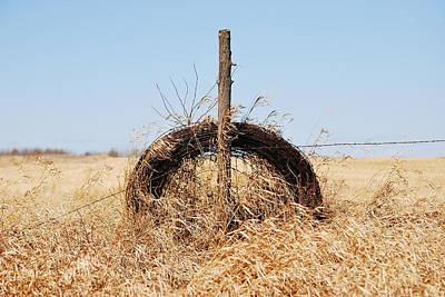 fields That Feed Art Print by Jerry Cordeiro
