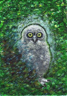 Painting - Fierce Owl  by Nancy Hotz
