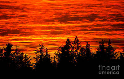 Fiery Alaskan Sunset Art Print by Paul Karanik