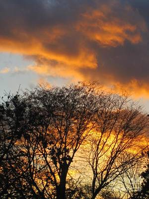 Photograph - Fiery Clouds by Tara  Shalton