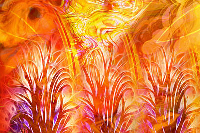 Digital Art - Fiery Fractal by Lutz Baar