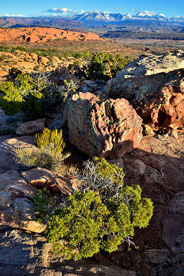 Photograph - Fiery Furnace And The La Sal by Ray Mathis