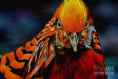 Pheasant Digital Art - Fiery Pheasant by Ray Shiu