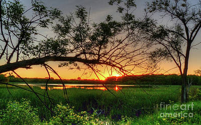 Photograph - Fiery Swamp Sunset by Deborah Smolinske