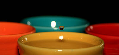 Fiestaware Photograph - Fiestaware by David Dufresne