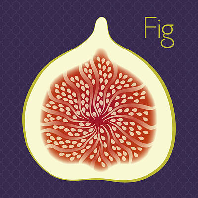 Kitchen Digital Art - Fig by Christy Beckwith