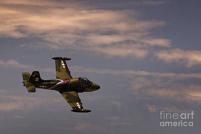 Photograph - Fighter II by Ryan Heffron