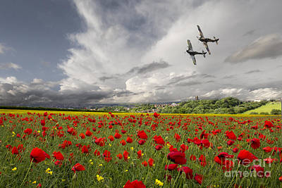 Poppies Field Digital Art - Fighter Pass by J Biggadike