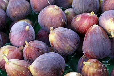 Figs Art Print by Denise Pohl
