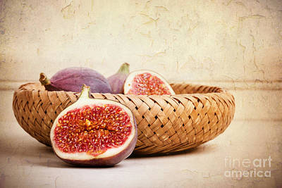 Figs Still Life Art Print by Jane Rix