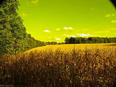 Photograph - Filtered Cornfield by Nick Kirby